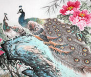 Chinese peacock paintings