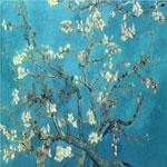 Cabang Dengan Almond Blossom