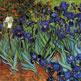Iris 1889