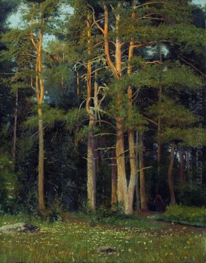 Pine Forest In Ligovo 1895
