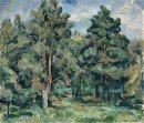 Pines Lit By The Sun 1920