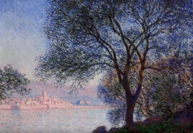 Antibes Seen From The Salis Gardens 02