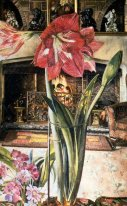 Amaryllis in Chauntry Court
