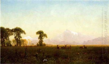 deer grazing grand tetons wyoming 1861