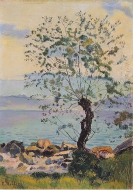 Willow Tree By The Lake 1890