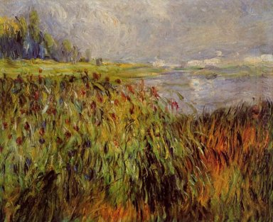 Bulrushes On The Banks Of The Seine 1874