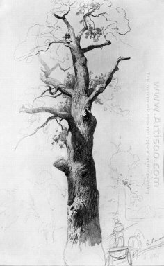 The Trunk Of An Old Oak 1869