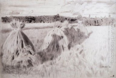 Field With Sheaves 1905