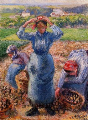 peasants harvesting potatoes 1882