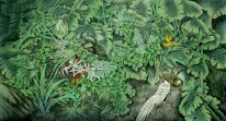 Pheasant - Chinese Painting