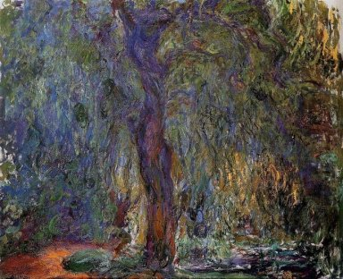 Weeping Willow 3 1919
