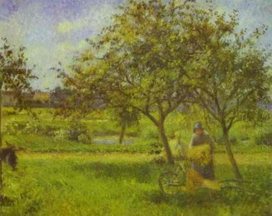 the wheelbarrow orchard
