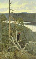 The Great Black Woodpecker
