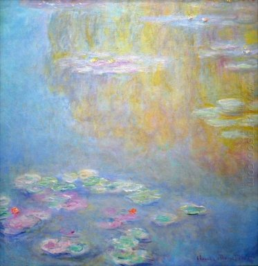Water Lilies 31