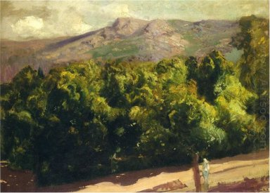 Gardens At San Ildefonso 1907