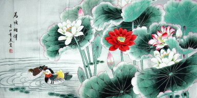 Pato mandarín - Lotus - pintura china
