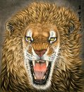 Lion-Face - Pintura Chinesa