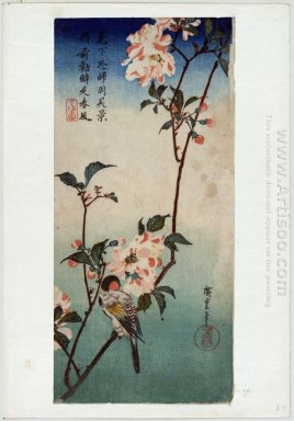 Small Bird On A Branch Of Kaidozakura 1838