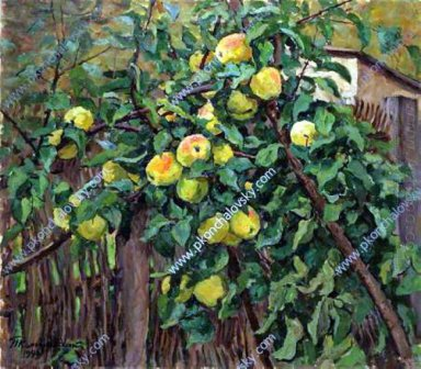 Apple Tree By The Fence 1949