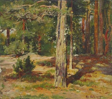 Pines Summer Landscape 1867