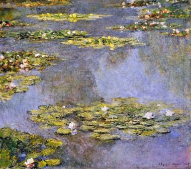 Water Lilies 8