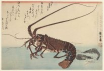 Crayfish And Two Shrimps 1845