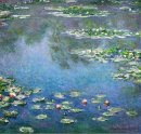 Water Lilies 14