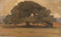 Landscape with Pine tree