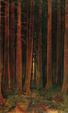sunset in the forest 1878