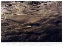 Untitled (from the series Still Water (The River Thames, for Exa