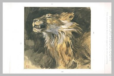 Roaring Lion S Head