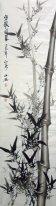 Bamboo - Chinese Painting