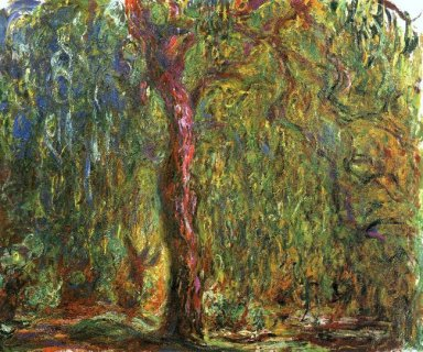 Weeping Willow 4 1919