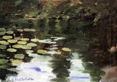 Yerres On The Pond Water Lilies