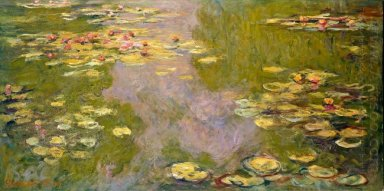 Water Lilies 46