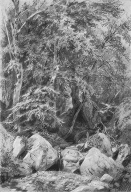 Trees Near A Stream On Mount Castel 1879