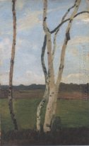 Landscape with Birch trunks