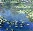 Water Lilies 1907 1