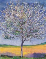 Cherry Tree In Bloom 1905