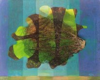 Seaweed Collage