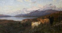 Cattle in a Highland Loch