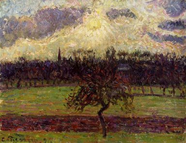 the fields of eragny the apple tree 1894