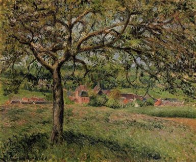 apple tree at eragny 1884
