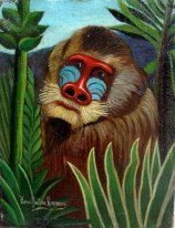 Mandrill In The Jungle 1909