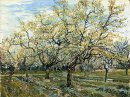 Orchard With Blossoming Plum Trees 1888