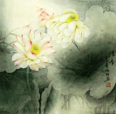 Lotus - Chinese Painting