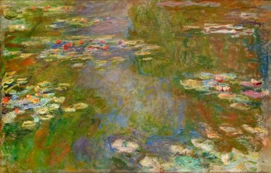 Water Lilies 42