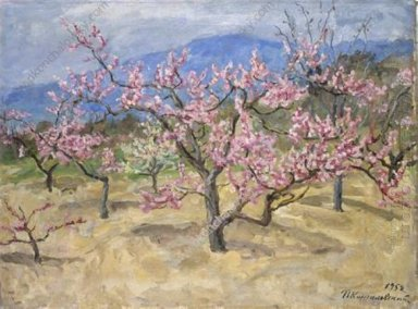 Crimea Blooming Peach Tree 1952