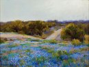 Bluebonnets au Late Afternoon