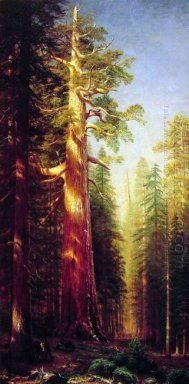 the great trees mariposa grove california 1876